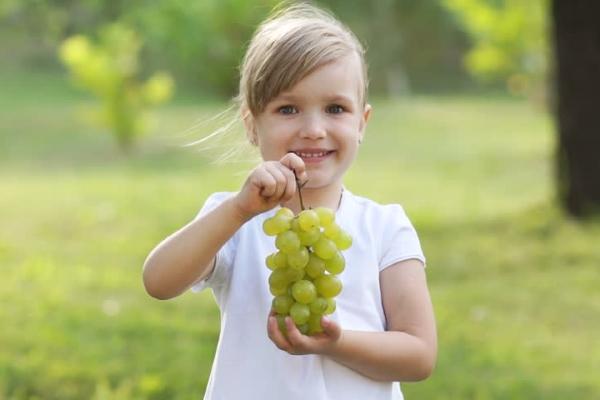 Давать ребенку виноград