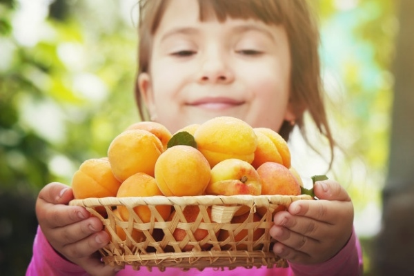 Давать ребенку абрикос