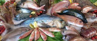 ТОП-10 самых дорогих в мире рыб