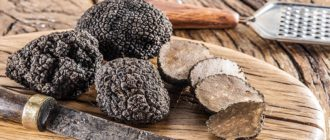 Дорогие грибы